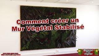 Comment créer un mur végétal stabilisé
