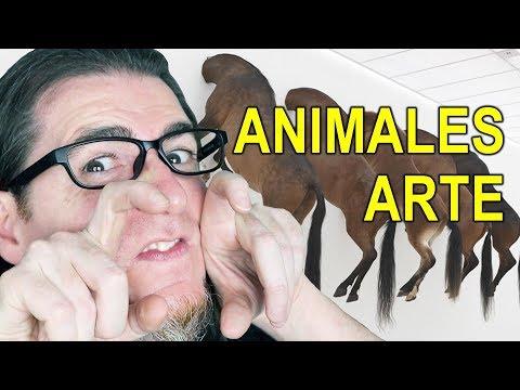 POLÉMICA MUSEO GUGGENHEIM BILBAO. ANIMALES EN EL ARTE