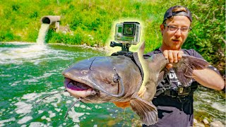 Video I Strapped A GoPro To a Catfish!!! (Underwater Spillway Footage) MP3, 3GP, MP4, WEBM, AVI, FLV Juli 2019