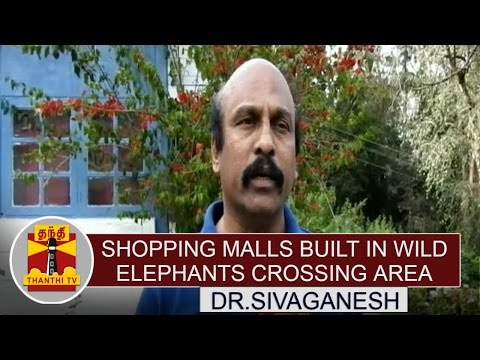 Shopping-Malls-Built-in-Wild-Elephants-Crossing-Area--Dr-Sivaganesh-Thanthi-TV