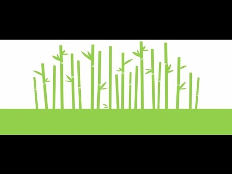 Caboo - Paper Made From Renewable Sugarcane & Bamboo