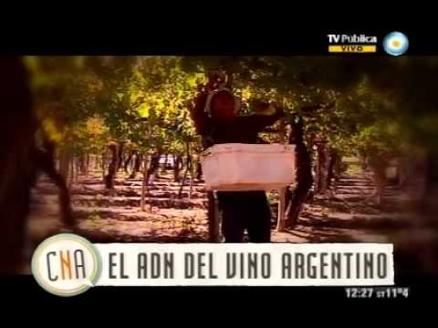 El vino argentino (Capítulo 4)
