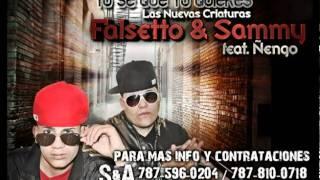 Sammy & Falsetto - Yo Se Que Tu Quieres (Audio) ft. Ñengo Flow