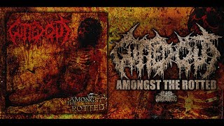 EP: Amongst the Rotted Released: Aug 8, 2008 Genre: Brutal Death Metal Location: Grand Rapids, Michigan Facebook: ...