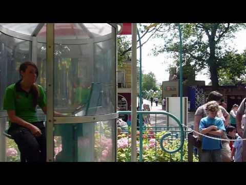 Ferris wheel Kikkerrad