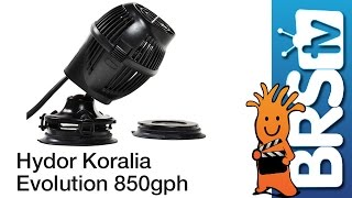 Hydor Koralia Evolution 850GPH Flow Dynamics
