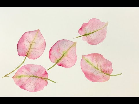 Beginners Watercolors Bougainvillea Leaves Tutorial