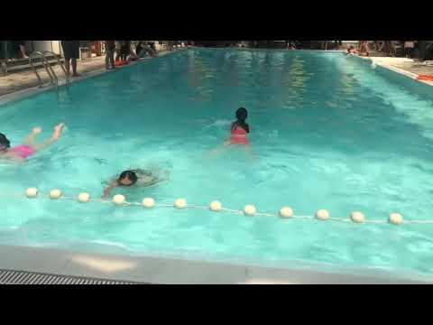 HS trường TH Bãi Cháy sôi nổi tham gia Hội khoẻ Phù Đổng cấp trường nội dung bơi ếch, bơi sải.