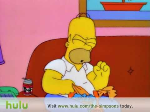 homer - chip thieving dogs