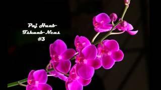 Paj Huab   Tshuab Ncas #3