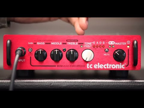 TC Electronic BH250 Bass Head - 5 Things You Need to Know