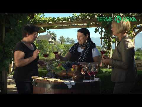 O Dolenjskih Toplicah | video
