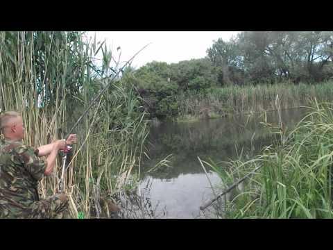 фидер на реке северский донец