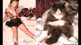 Забавные совпадения поз кошек и девушек, смешные котята YouTubeFotoVideo