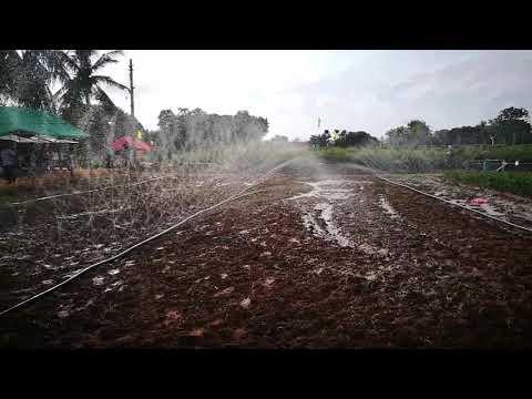 Rainhose Irrigation System in Agriculture Exhibition - Thirunelveli DATC, Jaffna