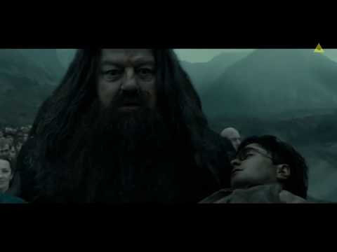 Hagrid carries Harry's body to Hogwart [Harry Potter: The Deathly Hallows 2]