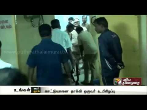 Tea-worker-dies-in-wild-elephant-attack-in-Nilgiri