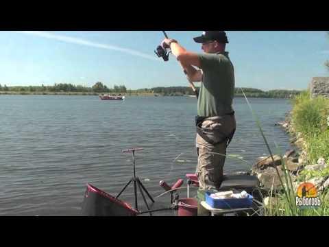 фидерная ловля на реке с алексеем фадеевым