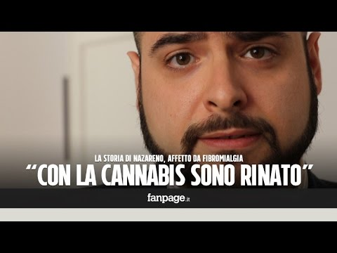 affetto da fibromialgia: rinato grazie alla cannabis curativa