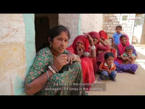 Life in the dry Thar desert