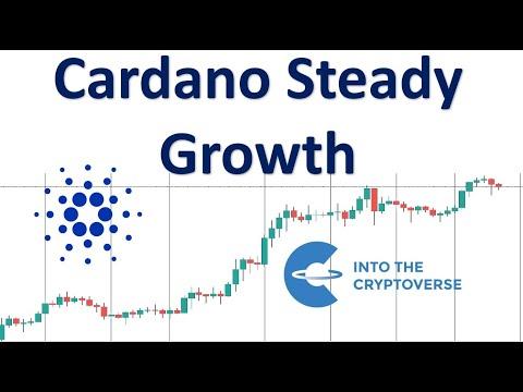 Cardano: Steady Growth
