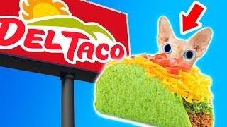 Video Top 10 Untold Truths of Del Taco!!! MP3, 3GP, MP4, WEBM, AVI, FLV Desember 2018