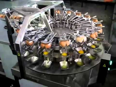 Watch egg breaking and separator machine