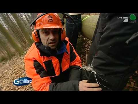 Wie funktionieren Schnittschutzhosen? (Pro 7 mit Galieo beim KWF 01.03.2011)