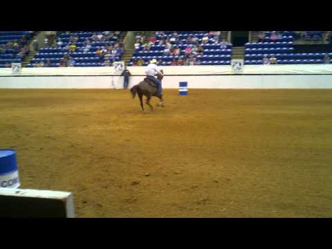 Purely De Best, Wesley Humphries - Roanoke Valley Horse Show 2011