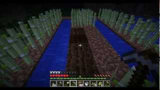 Minecraft Survival Ep. 28 - Indoor Sugar Cane Farm - Let's Play - Hard