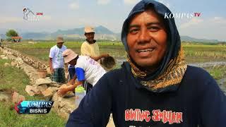 "Video Padat Karya Tunai, ""Bantuan Langsung"" Era Jokowi MP3, 3GP, MP4, WEBM, AVI, FLV Oktober 2018"