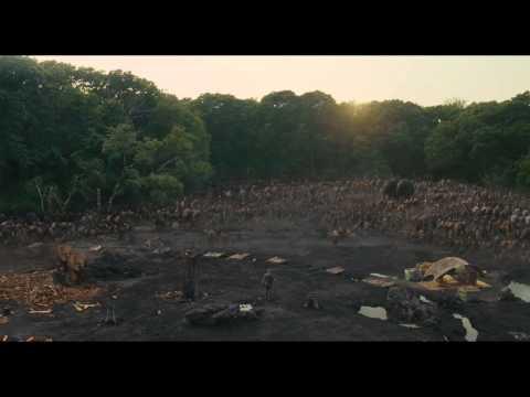 Noah (Clip 'It Begins')