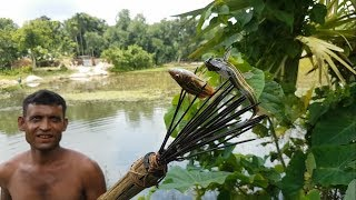Video Amazing Fish Hunting / Wild Style Fishing In Village / Catch Fish Using Hand Arrow MP3, 3GP, MP4, WEBM, AVI, FLV Juni 2018