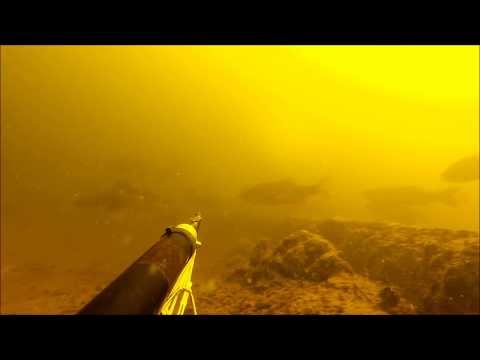 рыбалка дагестан 2017 апрель