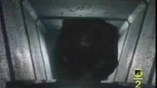Mr. Roboto - Styx