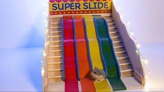Sneak Peek Superslide Training by AprilsAnimals