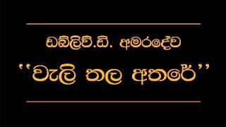 Video Wali Thala Athare   W D  Amaradewa MP3, 3GP, MP4, WEBM, AVI, FLV November 2017