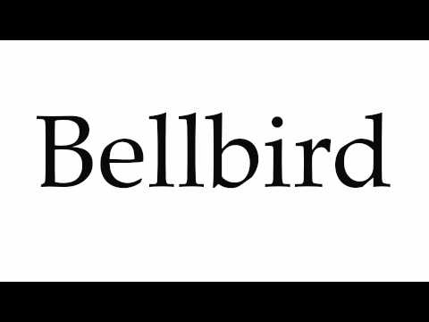 How to Pronounce Bellbird