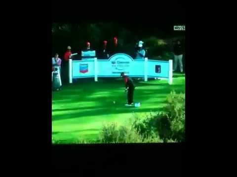 Spectator Shouts Mashed Potatoes After Tigers Tee Shot