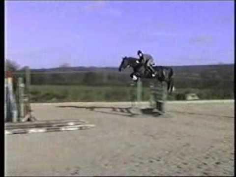 Jumbo of Grafham Stud jumping a 1.80m fence.