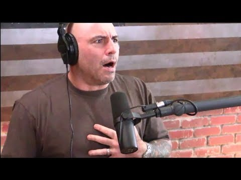 Joe Rogan - Floyd Mayweather vs. CM Punk in MMA?