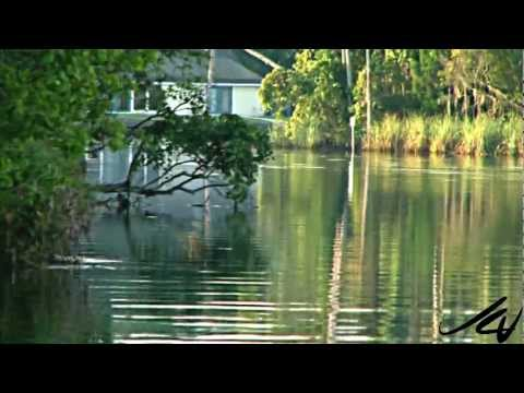 Crystal River Florida – we find manatee's