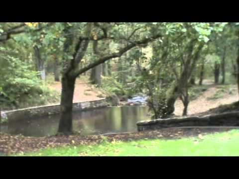Gloucester and the Forest of Dean | gloucestershire  Walks