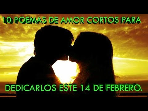 Poemas cortos - 10 Poemas De Amor Cortos Para Dedicar Este 14 De Febrero (A TU NOVIA O AMIGA)