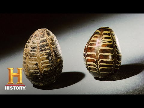 Ancient Aliens: The Universal Egg (Season 11, Episode 6) | History