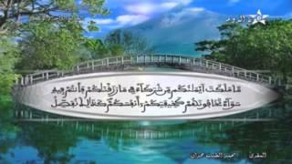 المصحف المرتل الحزب 41 للمقرئ محمد الطيب حمدان HD