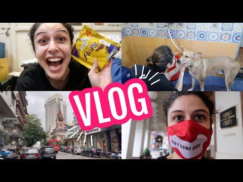 VLOG || A Day In The Life