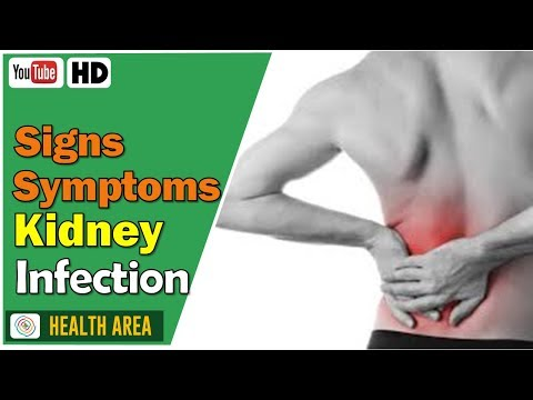 9 Signs You May Have a Kidney Infection