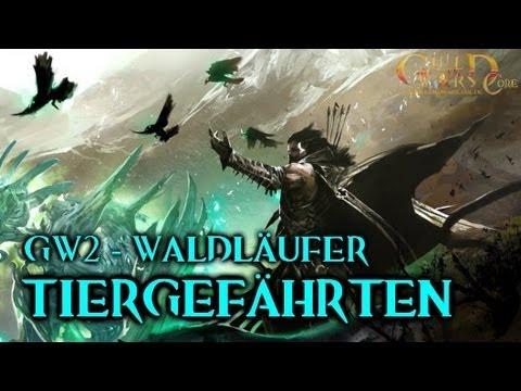 ★ Guild Wars 2 Waldläufer-Guide: Tiergefährten zähmen | GuildWarsCore.de