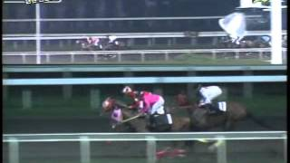 RACE 8 HIEROGLYPHICS 09/22/2014